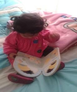 lectura familia actividades