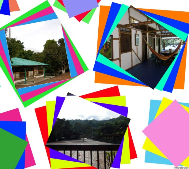 collage-de-paisajes
